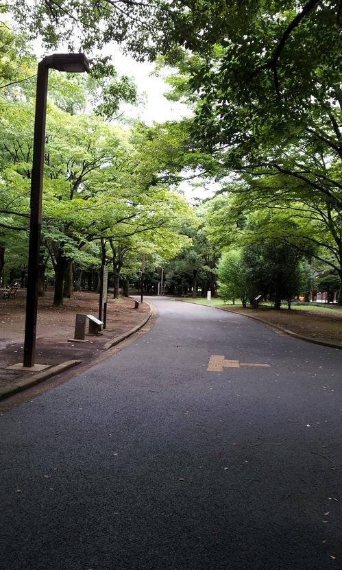 20120919_雨上がり.jpg