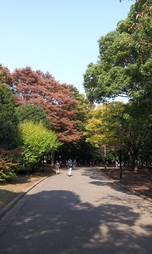 20121101_秋の始まり.jpg