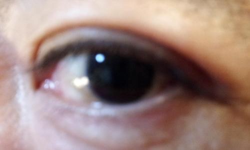 20121124_パパの目.jpg