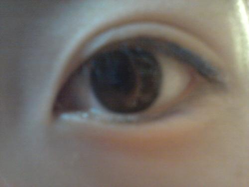 20121124_紗妃の目.jpg