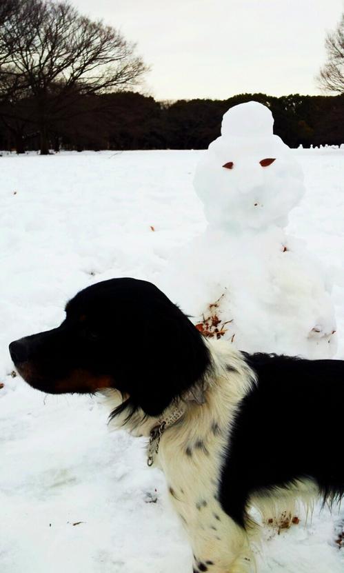 2013-01-16 雪だるまと一緒.jpg