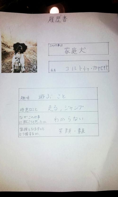 2013-02-07 履歴書.jpg