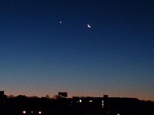 20140129 きれいな月.jpg