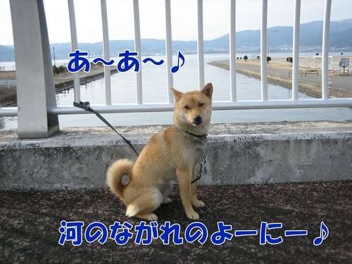IMG_2174ブログ.jpg