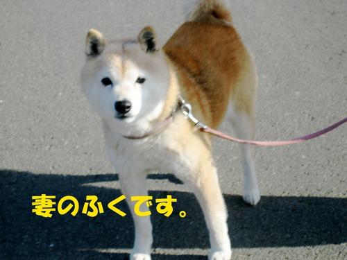 IMG_2243ブログ.jpg