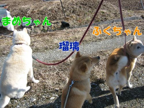 IMG_2355ブログ.jpg