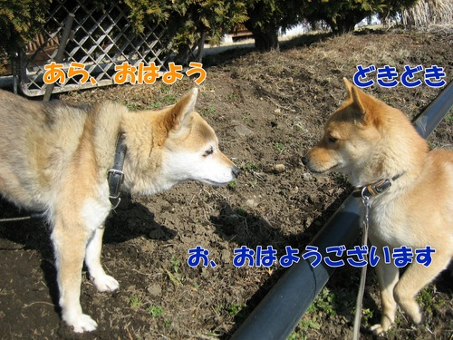IMG_2356ブログ.jpg