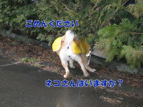 IMG_2372ブログ.jpg
