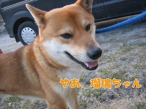 IMG_2393ブログ.jpg