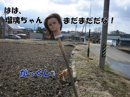IMG_2417ブログ.jpg