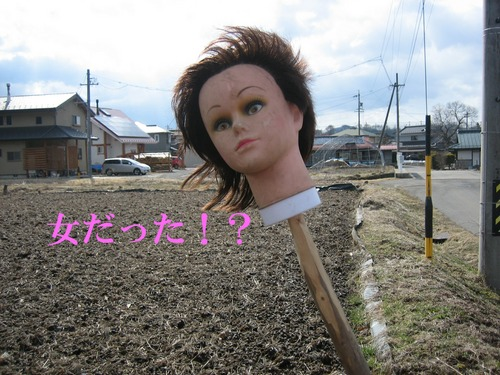 IMG_2418ブログ.jpg