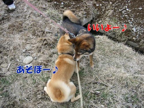 IMG_2469ブログ.jpg
