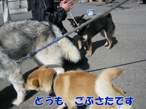 IMG_2504ブログ.jpg