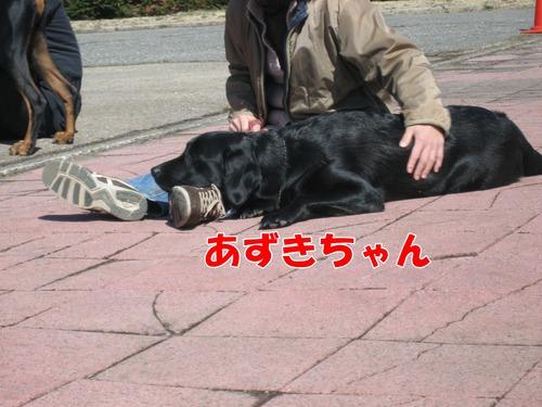 IMG_2521ブログ.jpg