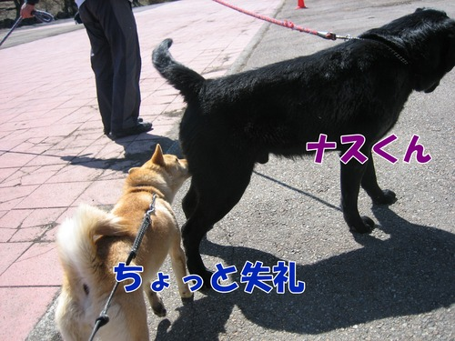 IMG_2539ブログ.jpg