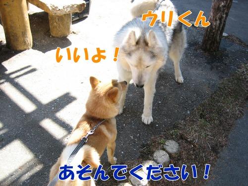 IMG_2544ブログ.jpg