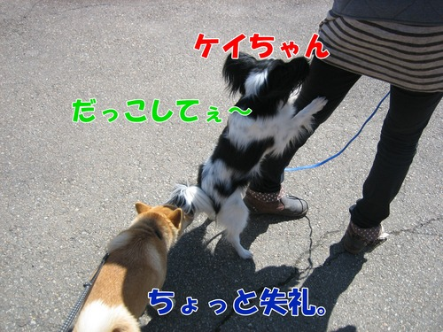 IMG_2547ブログ.jpg