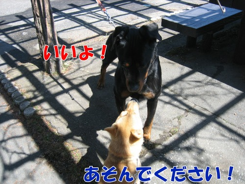 IMG_2548ブログ.jpg
