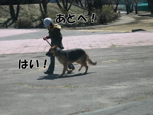 IMG_2550ブログ.jpgのサムネール画像