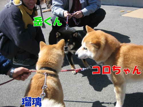 IMG_2552ブログ.jpg