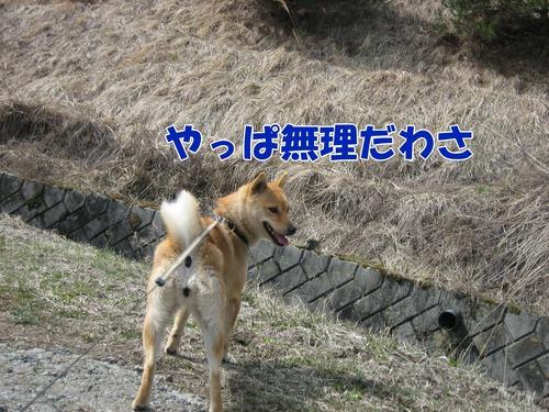 IMG_2606ブログ.jpg