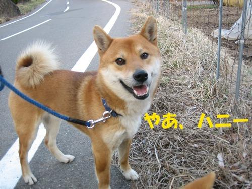IMG_2622ブログ.jpg