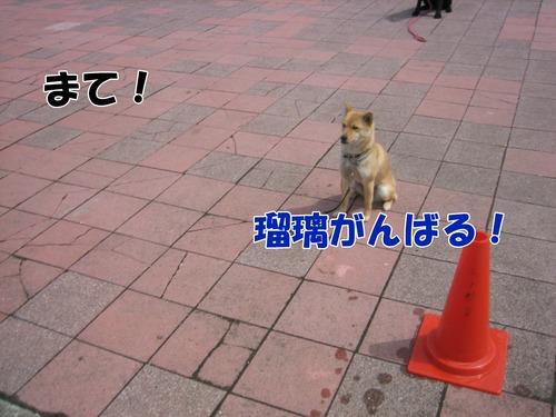 IMG_2733ブログ.jpg
