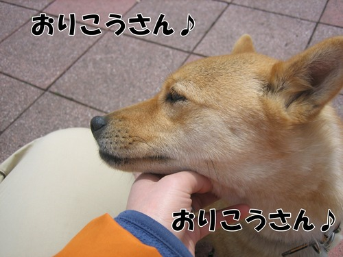 IMG_2736ブログ.jpg