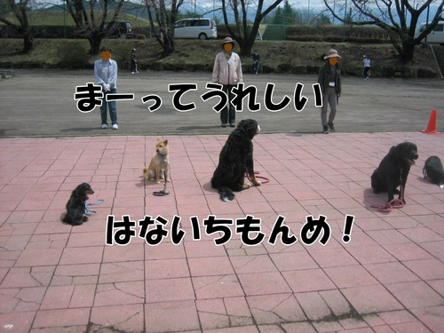 IMG_2743ブログ.JPG