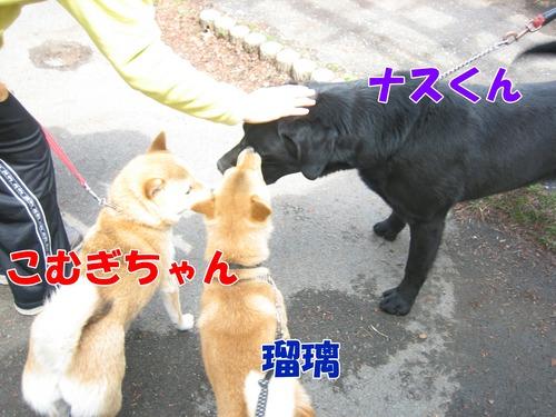 IMG_2761ブログ.jpg