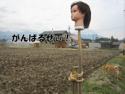 IMG_2781ブログ.jpg