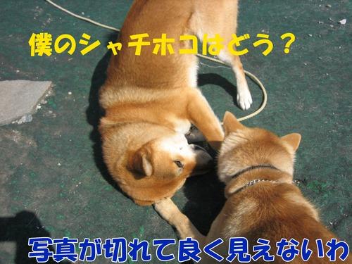IMG_2802ブログ.jpg