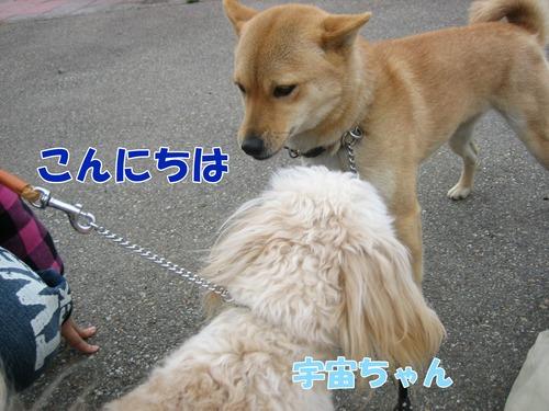 IMG_3010ブログ.jpg