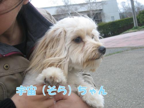 IMG_3014ブログ.jpg