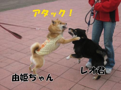 IMG_3016ブログ.jpg