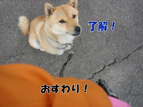IMG_3031ブログ.jpg