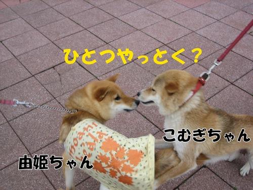 IMG_3038ブログ.jpg