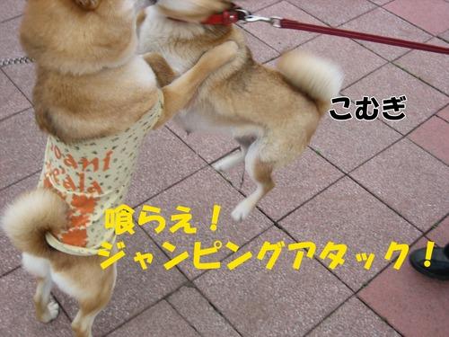 IMG_3041ブログ.jpg