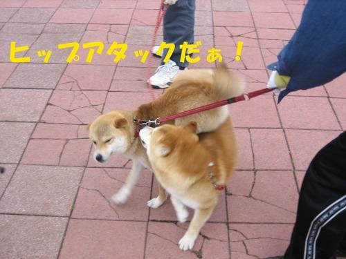 IMG_3043ブログ.jpg