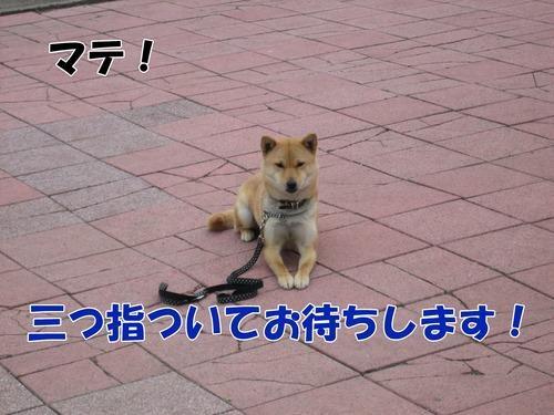 IMG_3074ブログ.jpg