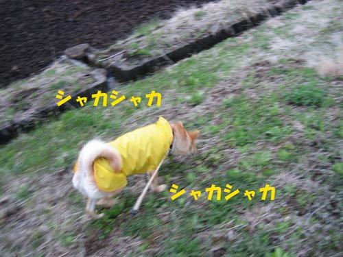 IMG_3100ブログ.jpg