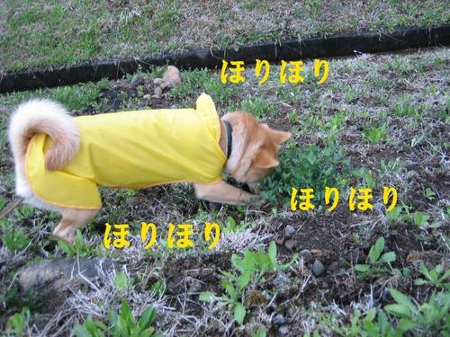 IMG_3108ブログ.jpg