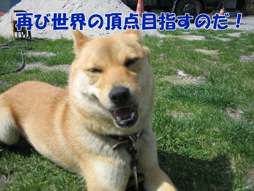 IMG_3175ブログ.jpg