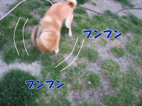 IMG_3198ブログ.jpg
