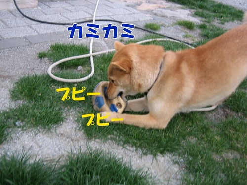 IMG_3200ブログ.jpg