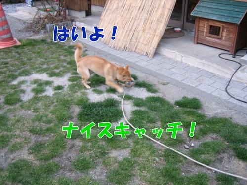 IMG_3213ブログ.jpg