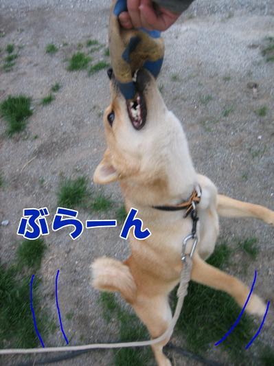 IMG_3217ブログ.jpg