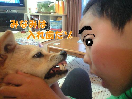 コピー ~ CA390013みなみ.JPG