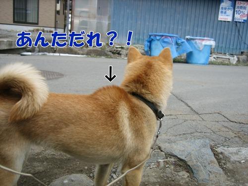 IMG_2397ブログ.jpg