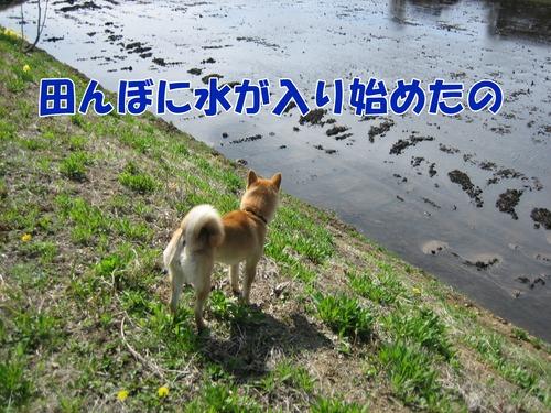 IMG_3516ブログ.jpg